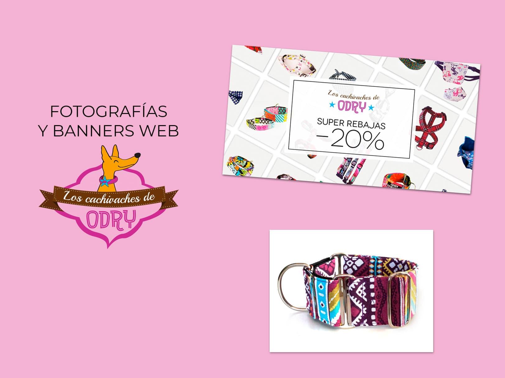 Portfolio banners web